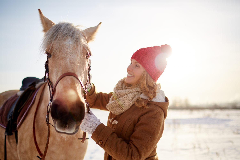 5 Horse Care Tips & Tricks For Winter