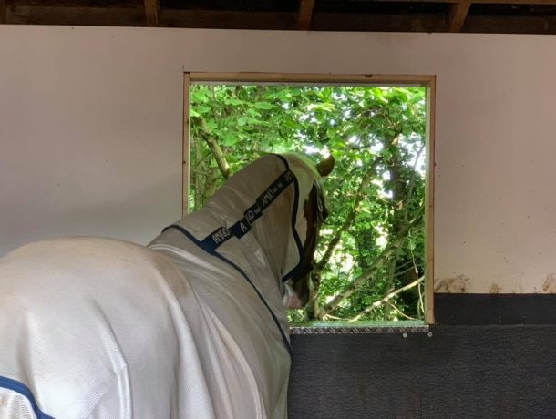 stable window inside view