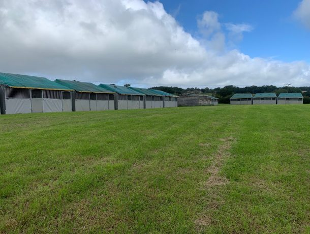 Starbox Temporary horse stables Bolesworth