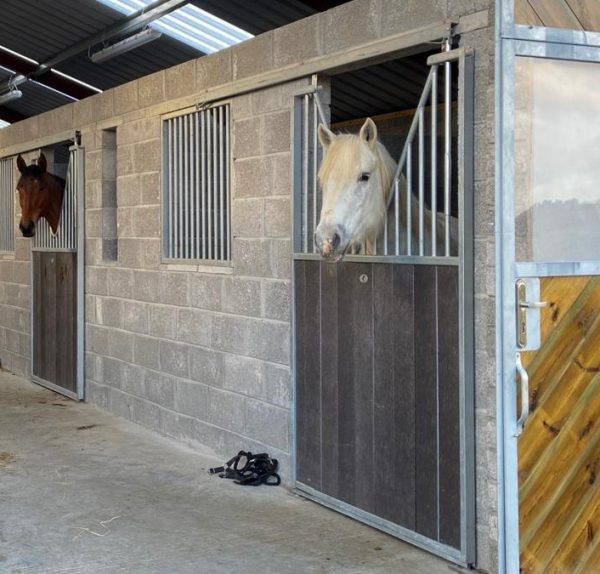 Horse stable doors in plastic with v bars